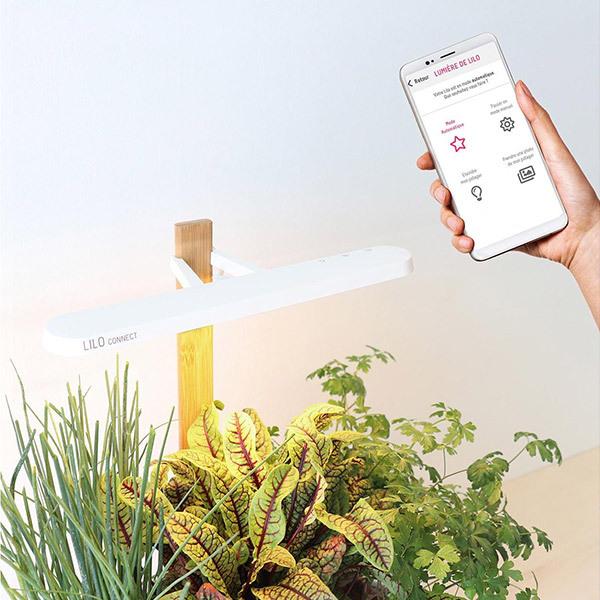 Prêt à Pousser LILO Connect Indoor-KräutertopfBild
